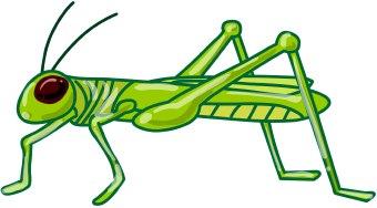grasshopper clipart images clipart panda free clipart images rh clipartpanda com grasshopper clip art black and white grasshopper clip art images