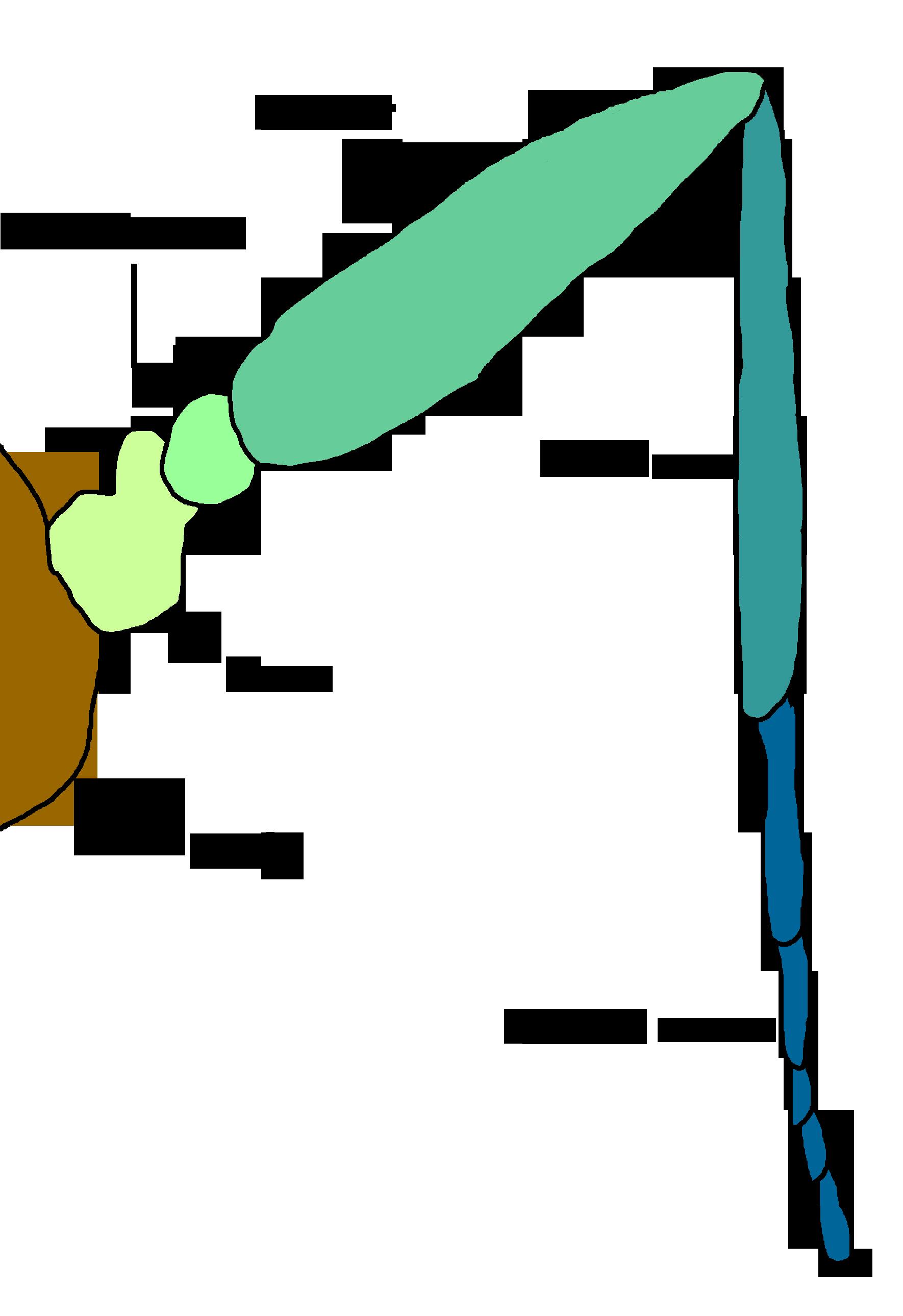 Grasshopper Diagram