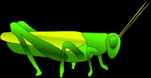 grasshopper%20outline