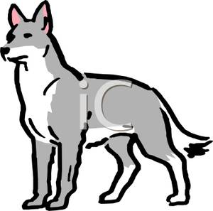 gray wolf clip art clipart panda free clipart images rh clipartpanda com Wolf Howling Clip Art wolf clipart images