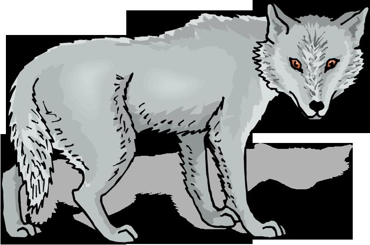 Gray Wolf Clip Art Clipart Panda