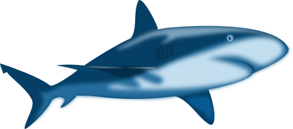 great-white-shark-clipart-great-white-shark-hi.png