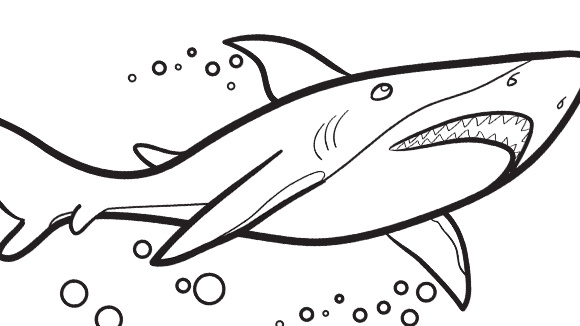 great white shark coloring pages - Great White Sharks Coloring Pages