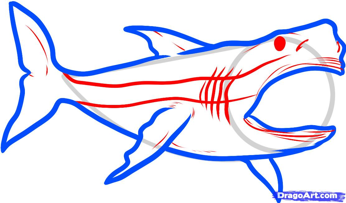 Great white shark drawing clipart panda free clipart for Free drawing sites