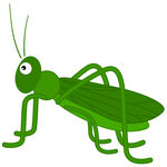 Green Grasshopper | Clipart Panda - Free Clipart Images