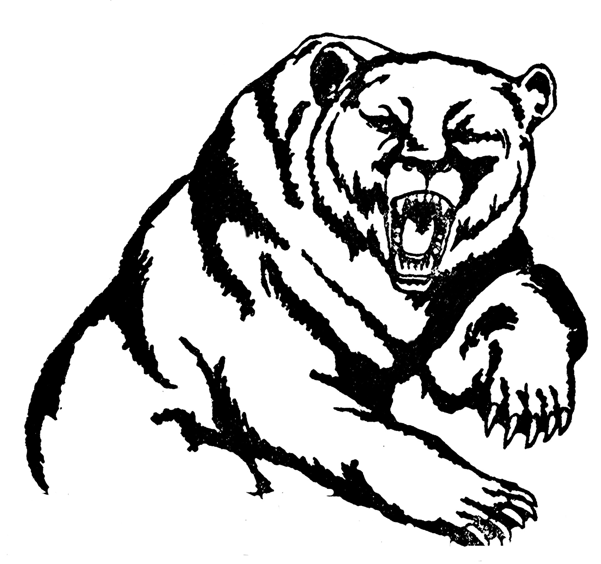 Cute grizzly bear clipart - photo#20