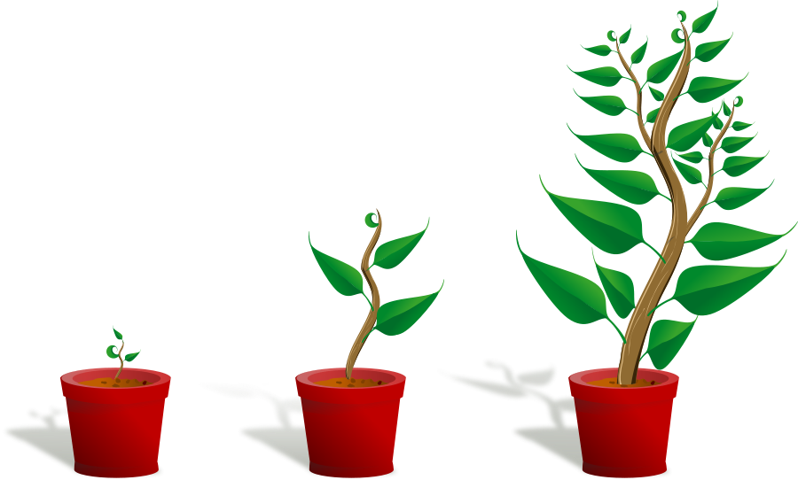 growing plant clipart clipart panda free clipart images rh clipartpanda com Growing Tree Clip Art growing plants clip art