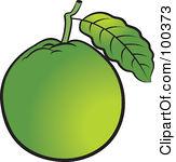 guava clipart clipart panda free clipart images