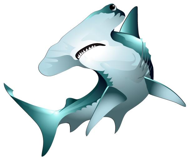 hammerhead shark clip art clipart panda free clipart Hammerhead Shark Silhouette Clip Art hammerhead shark clipart black and white