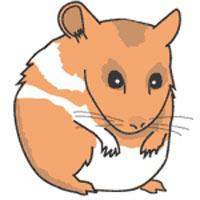 hamster clip art free clipart panda free clipart images rh clipartpanda com hamster clipart free hamster clip art free