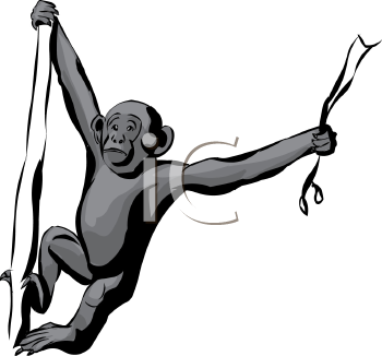 how to draw a monkey hanging from a branch
