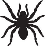 Spider vector Stock | Clipart Panda - Free Clipart Images
