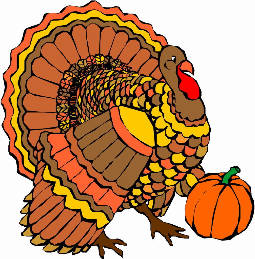 happy-thanksgiving-turkey-wallpaper-FK9iRpieG jpegHappy Thanksgiving Turkey