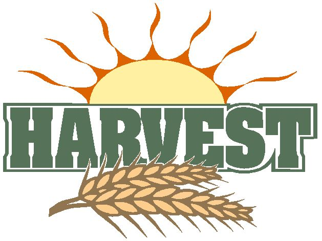 Image result for clip art for harvest