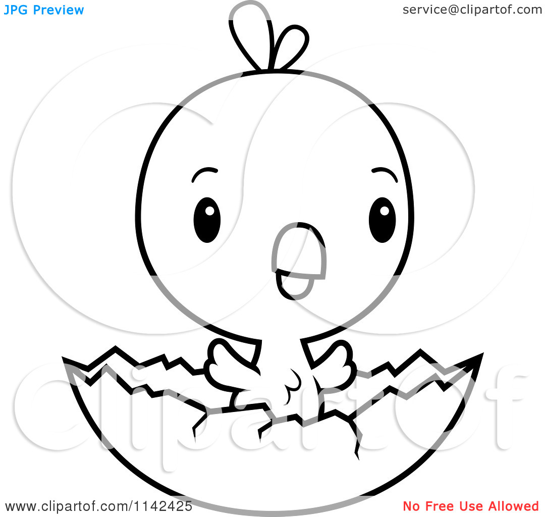 Chicken coloring pages  Free Coloring Pages
