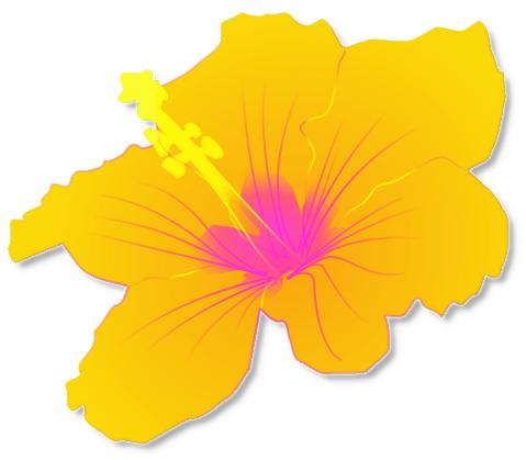 hawaiian%20clip%20art%20borders