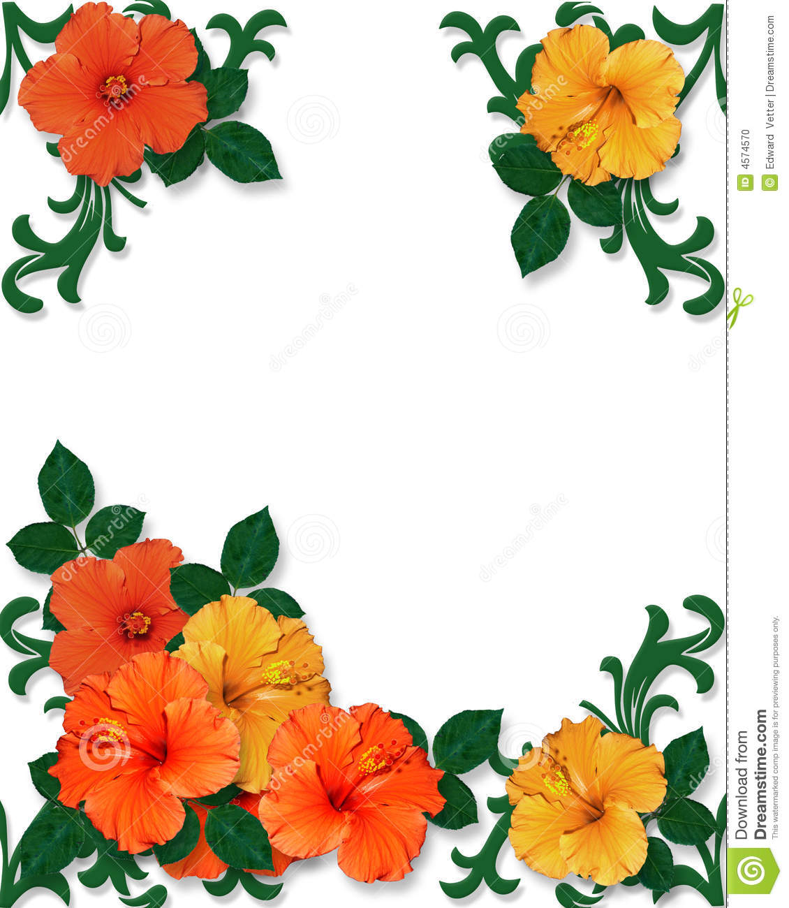 Luau Clip Art Borders Free | Clipart Panda - Free Clipart Images