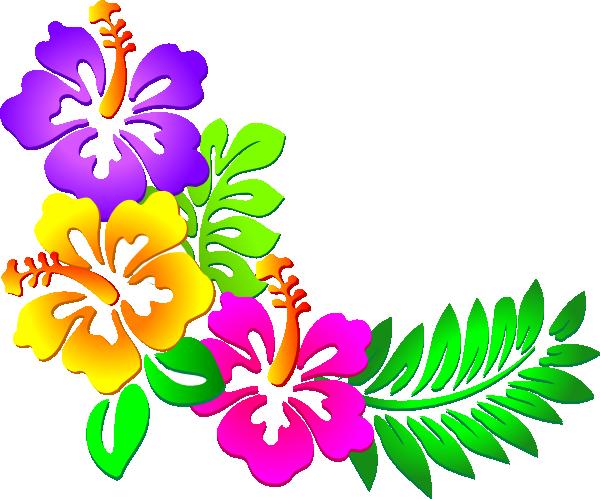 hibiscus-clip-art-border.png | Clipart Panda - Free ...