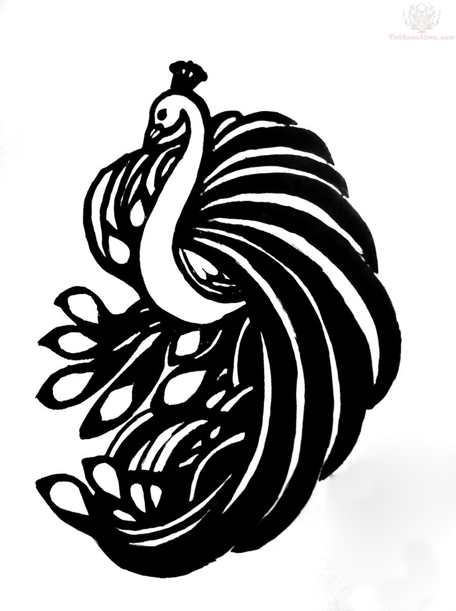 Peacock Outline Tattoo Design Clipart Panda Free Clipart Images