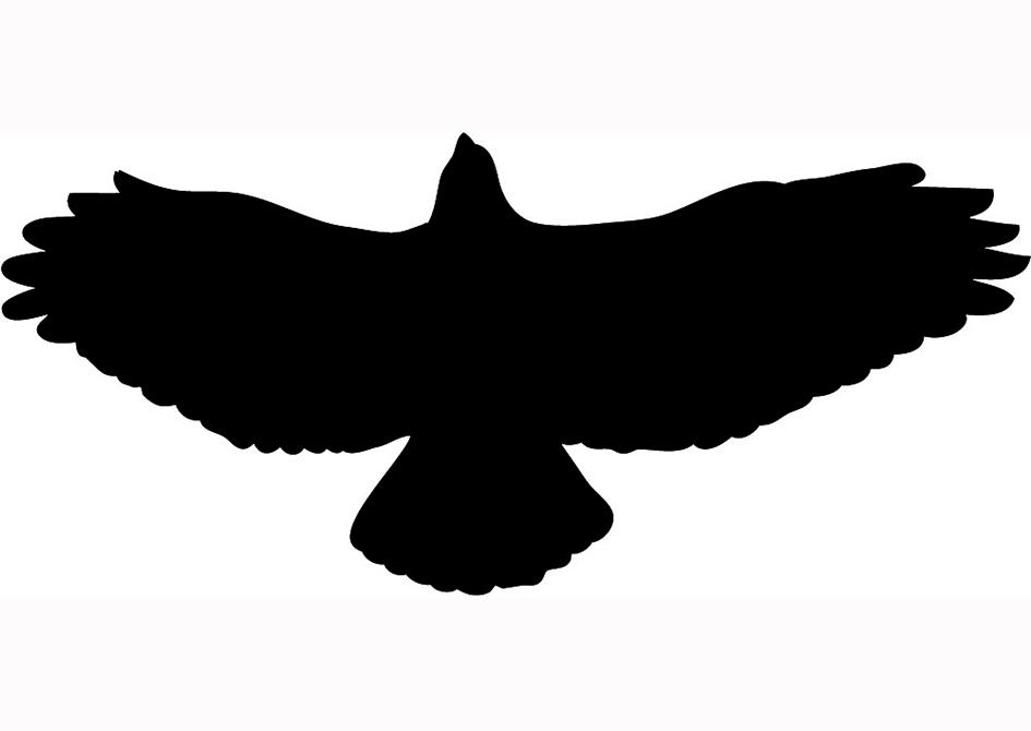 Hawk Clip Art Silhouette | Clipart Panda - Free Clipart Images