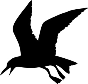 hawk%20clipart%20black%20and%20white