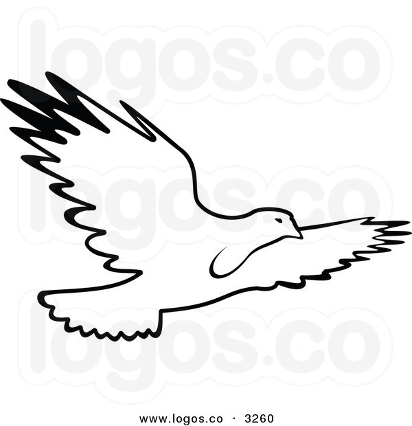 Hawk Clipart Black And White | Clipart Panda - Free ...
