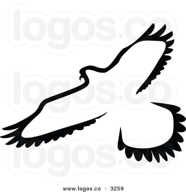 Seagull Clipart Black And White | Clipart Panda - Free ...