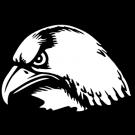 hawk%20head%20clipart