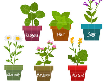herbs and spices clip art for clipart panda free clipart images rh clipartpanda com Spice Rack Clip Art Spice Rack Clip Art