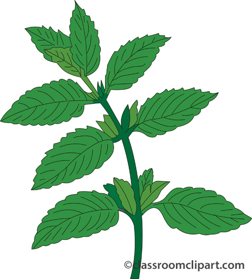 Herb 20clipart | Clipart Panda - Free Clipart Images