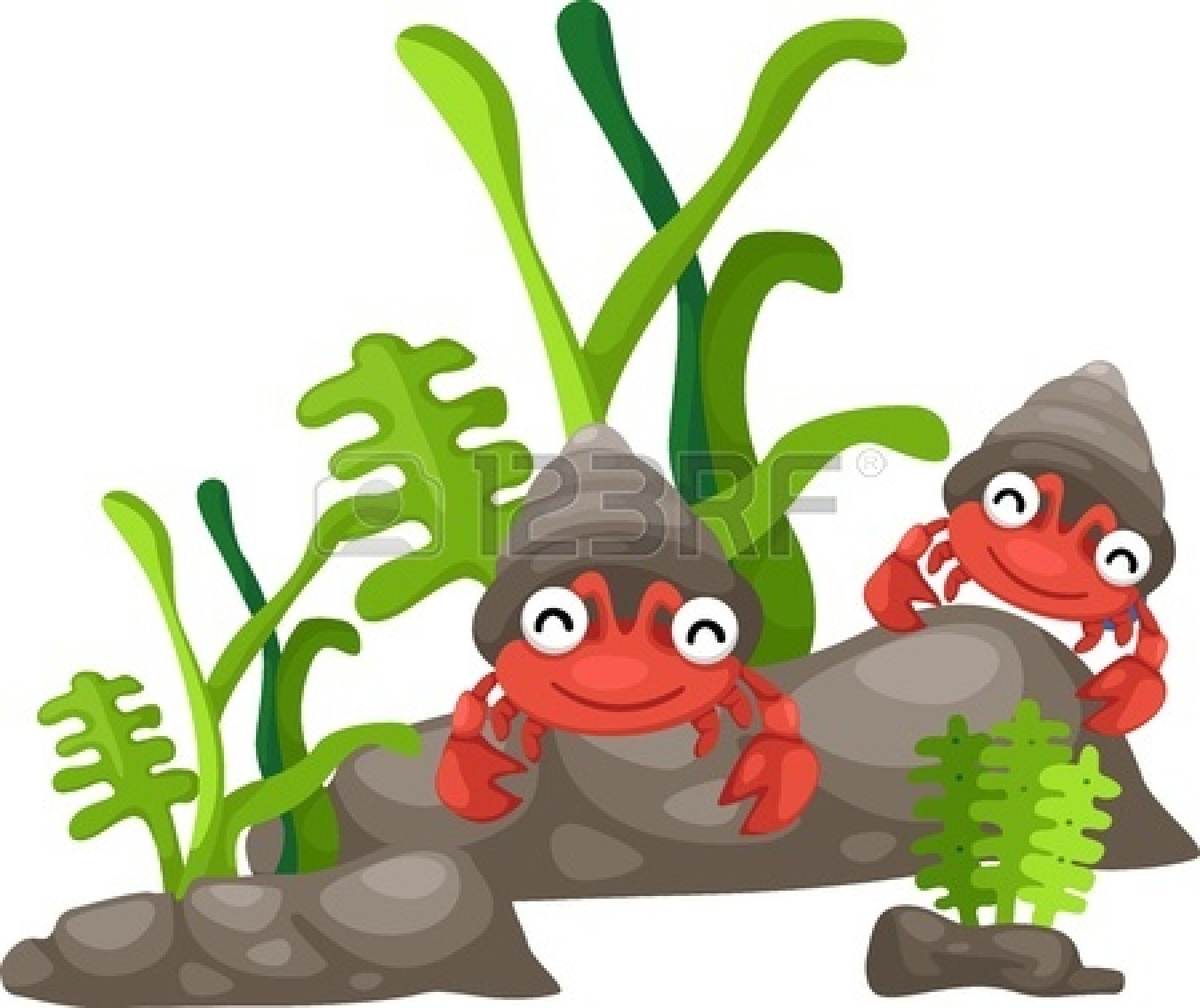 Hermit Crab Clipart Black And White | Clipart Panda - Free ...