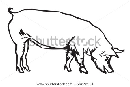 Clip Art Hog Clipart hog 20clipart clipart panda free images