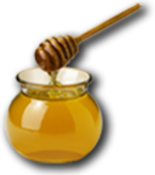 honey clip art free clipart panda free clipart images rh clipartpanda com honey bear clip art free honey clipart free download