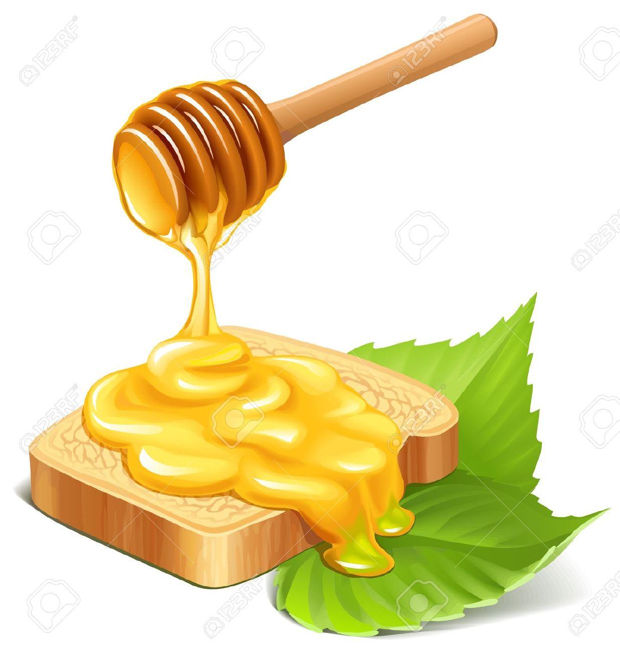 clipart honey - photo #41