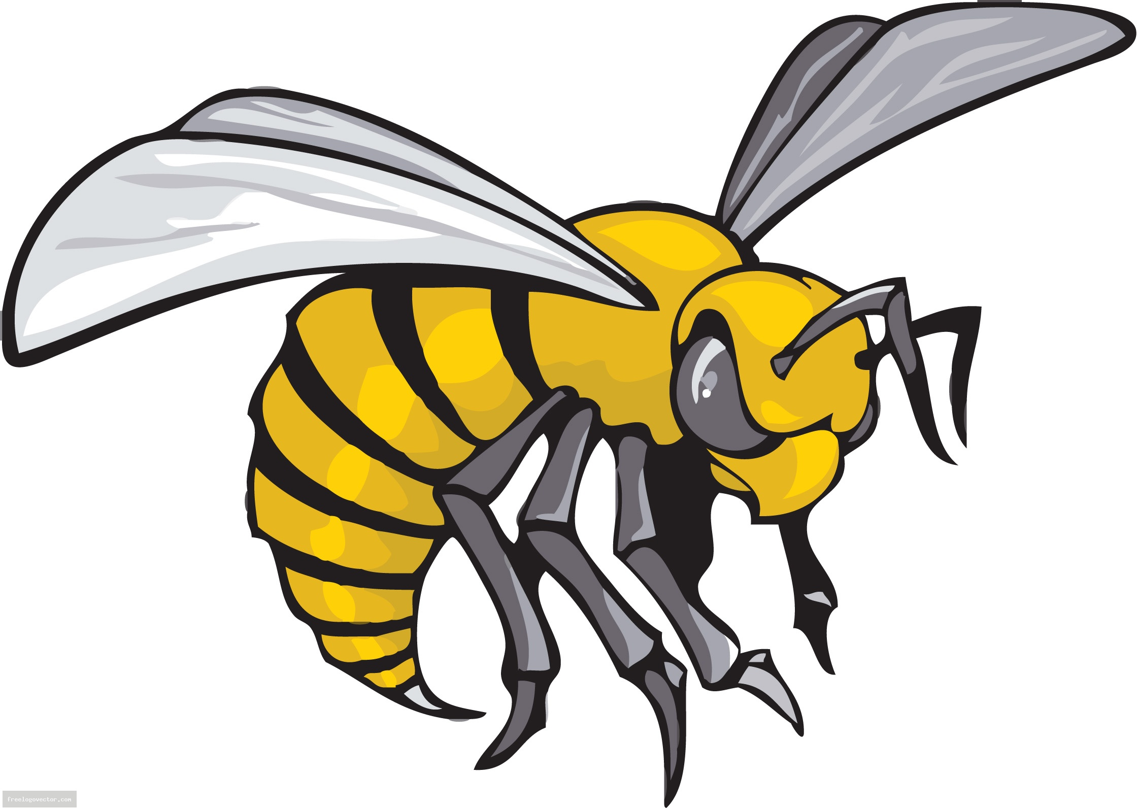 yellow hornets logo - photo #4