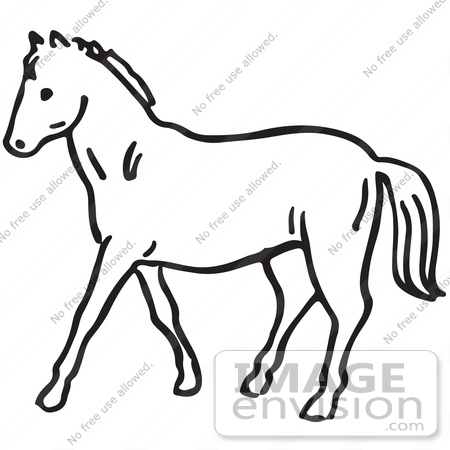horse clip art black and white clipart panda free clipart images rh clipartpanda com horse clip art black and white free running horse clipart black and white