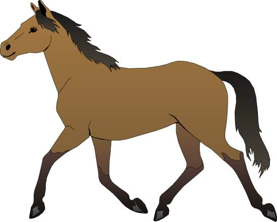 Horse head clip art ar - photo#26