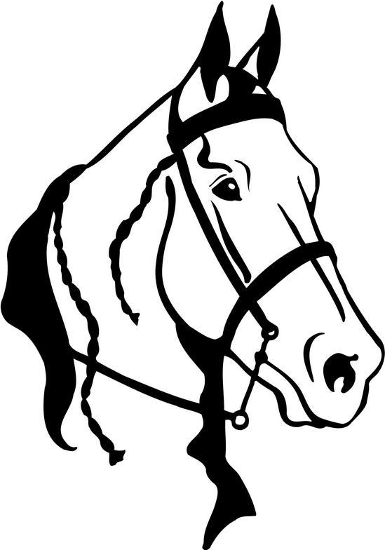 quarter horse head clipart