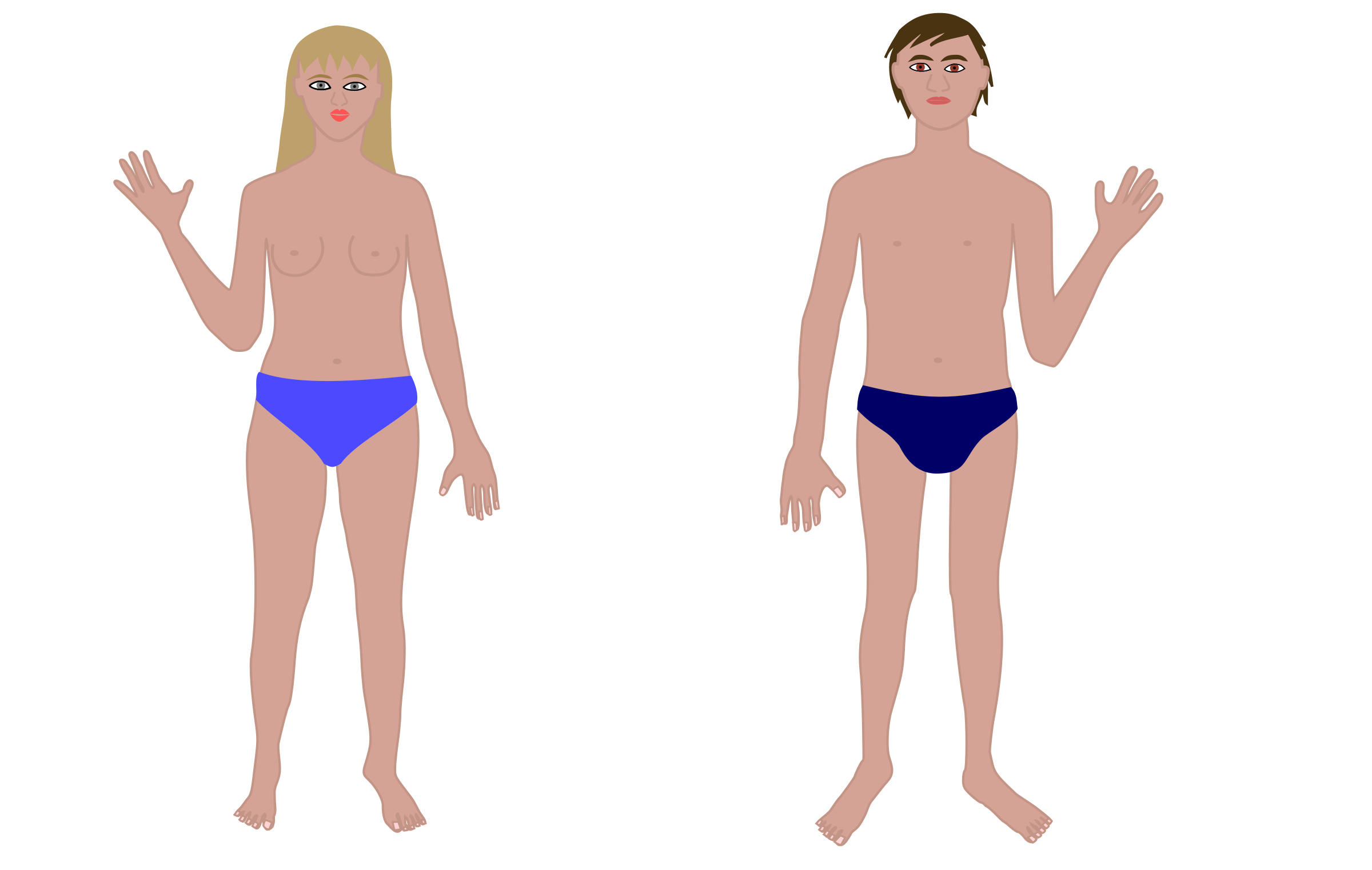 Body man. Human and woman clipart
