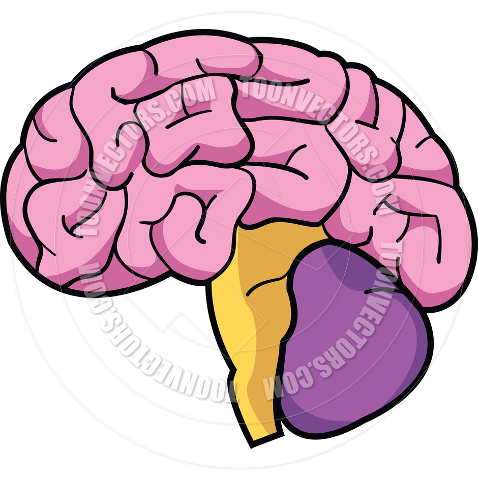 animated brain clipart - photo #6
