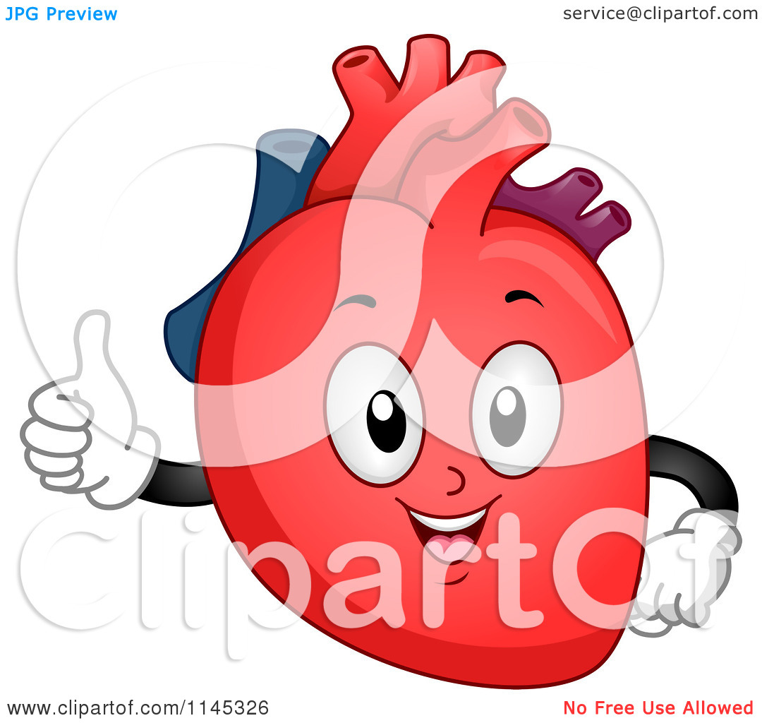 clipart of a human heart - photo #23