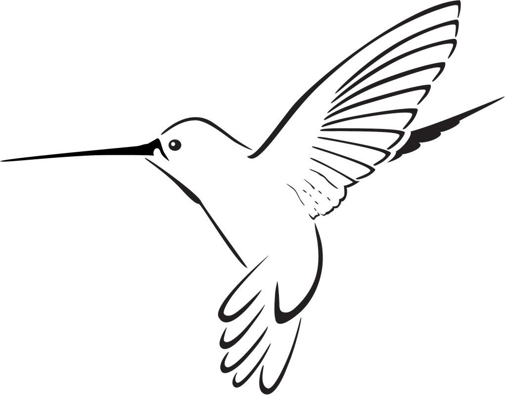 hummingbird clipart clipart panda free clipart images rh clipartpanda com hummingbird clipart images hummingbird clipart images