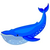Humpback whale clipart - photo#9