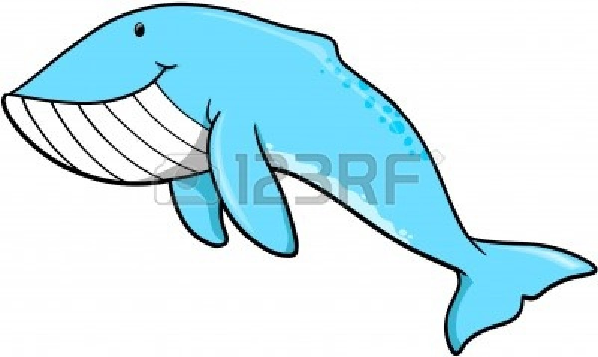 Humpback whale clipart - photo#4