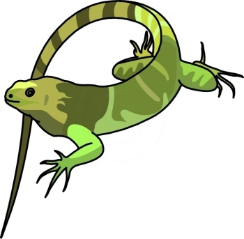 iguana clipart cartoon clipart panda free clipart images rh clipartpanda com iguana clip art b&w iguana clip art outline