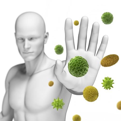 http://images.clipartpanda.com/immunity-clipart-boost-immunity.jpg