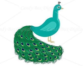 Peacock Border Clipart | Clipart Panda - Free Clipart Images