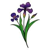iris flower clip art free clipart panda free clipart images rh clipartpanda com irish clip art free iris clip art black and white