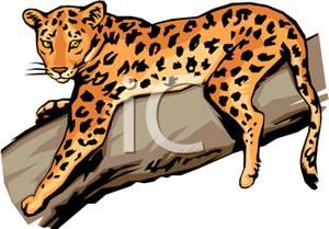 jaguar clip art free clipart panda free clipart images rh clipartpanda com jaguar clipart logo jaguar clipart logo