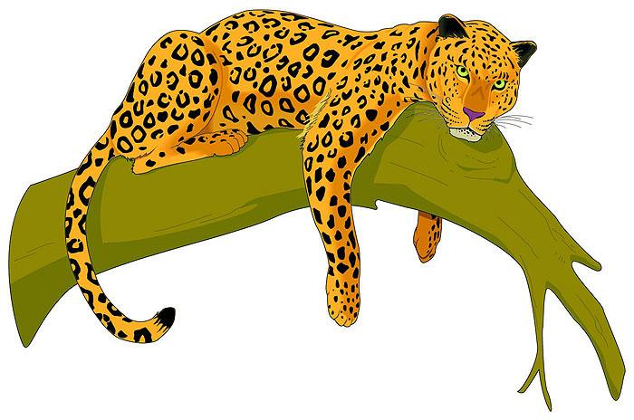 Jaguar Clip Art For Kids | Clipart Panda - Free Clipart Images